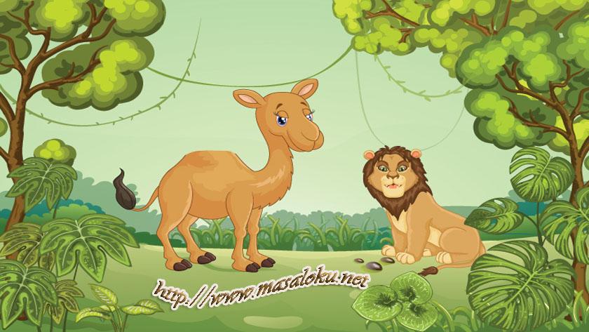 ofkeli-aslan